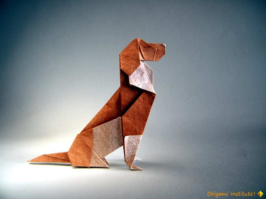 Beagle - Seth Friedman by Rui Roda.jpg